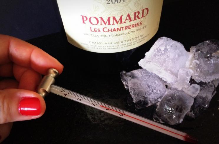 Ideale Kamertemperatuur Woonkamer : Wijnmythe rode wijn drink je op kamertemperatuur mijn motto
